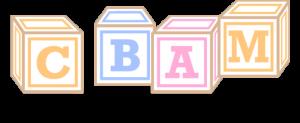 CBAM Blocks